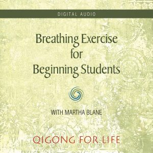 Breathing Exercise Beginning - Audio